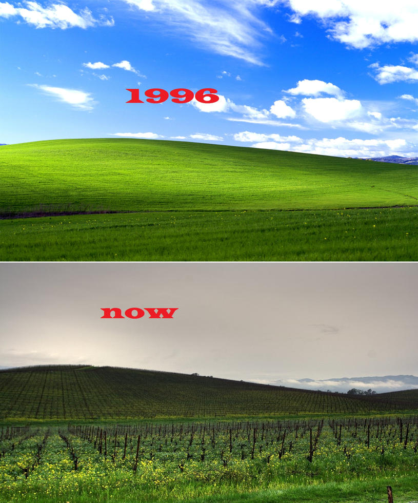 Download 90 Wallpaper Animasi Bergerak Untuk Windows Xp HD Paling Keren