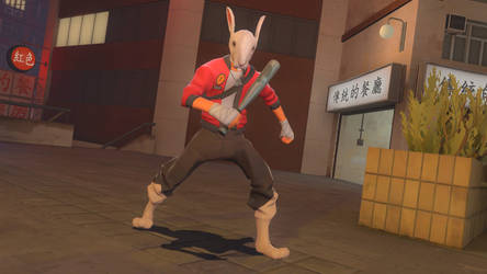 The Rabbit Scout