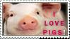 .Pigs lover by Nekochan90