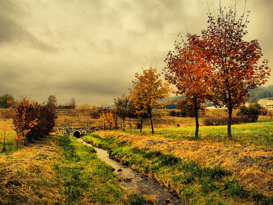 Autumn stream by FrantisekSpurny