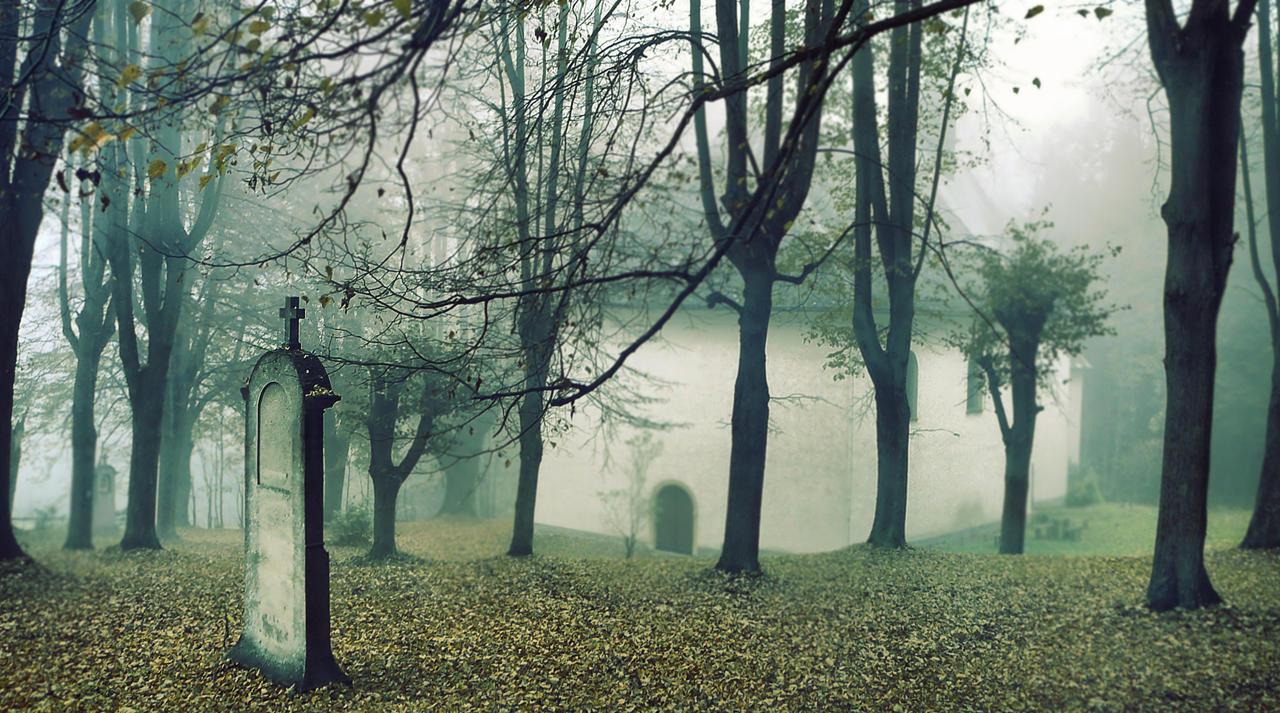 dark wood by FrantisekSpurny