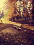 Autumn bench 2