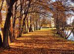 Autumn path 4