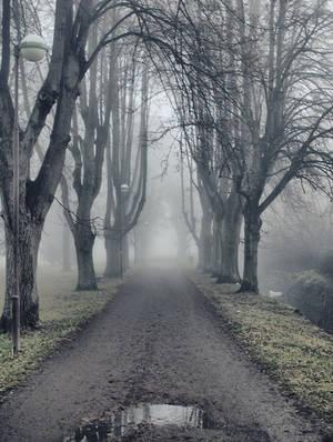 Dark Path 2
