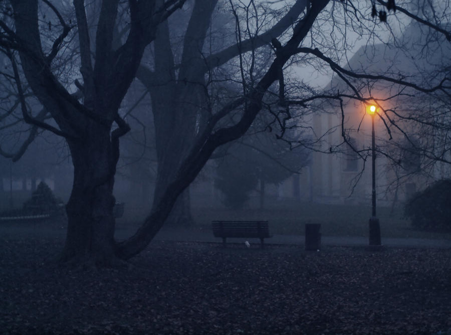 Park by FrantisekSpurny