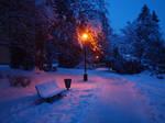 winter stock 14