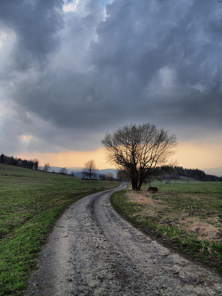 Spring Road by FrantisekSpurny