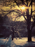 Winter has come to play by FrantisekSpurny