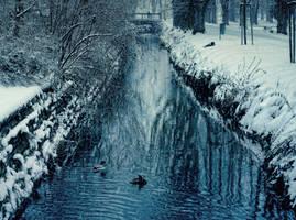 winter park 5 by FrantisekSpurny