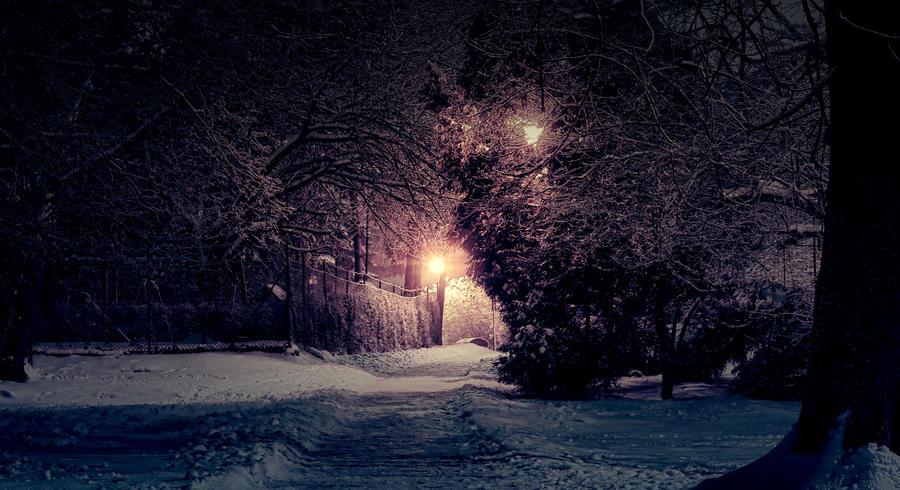 Winter park 6 by FrantisekSpurny