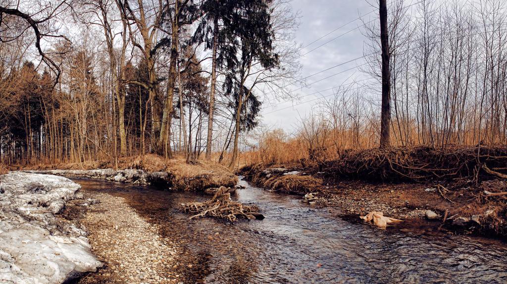 Riverside stock by FrantisekSpurny