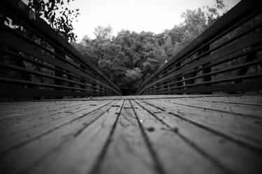 The Endless Walk