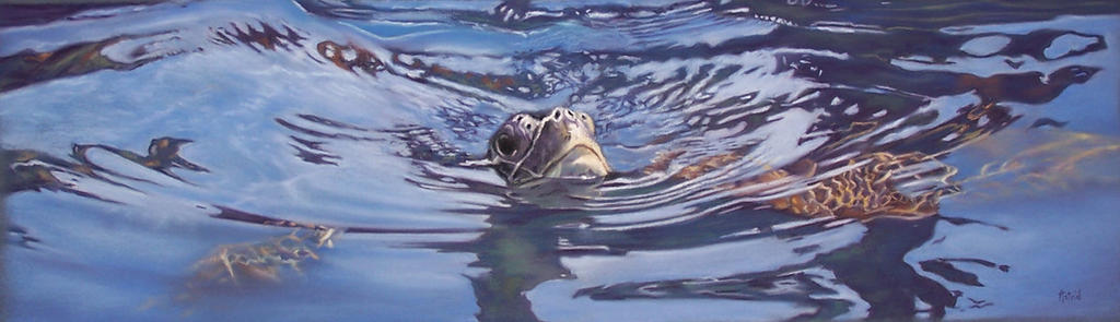 The Turtle - Pastel Painting by AstridBruning