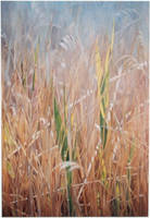 Rthymic Reeds - Oil Painting by AstridBruning