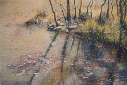 Still Waters -  mixed media