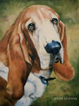 nothing but a Hound Dog - OIL Painting