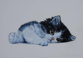 Ignacia's Kenzo - Oil Painting by AstridBruning