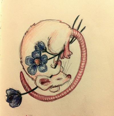 Doinkingtime 34 11 Flowers For Algernon By Baleineau