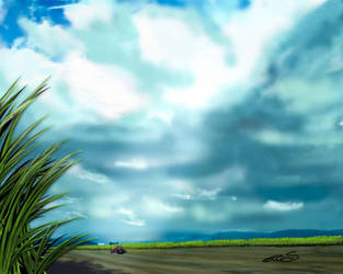 Sugar Cane Country by vanndra