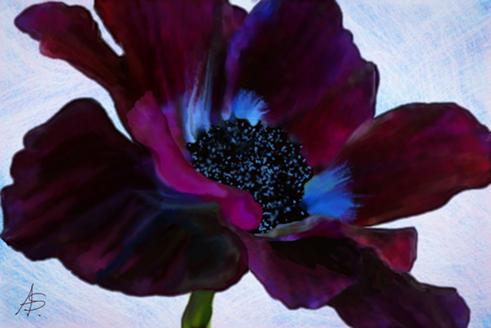 Quick Flower by vanndra