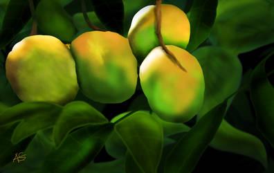 Mangoes-not quite ripe!