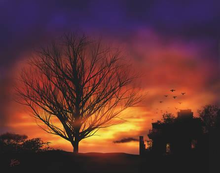 Sunset Tree in Autumn