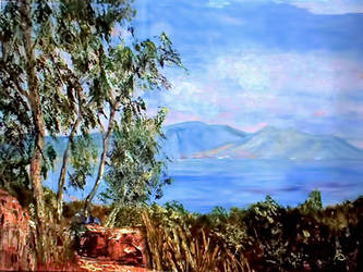 The Island by vanndra
