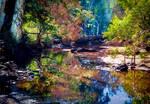 Bluewater Creek