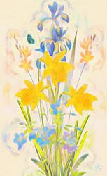 Daffodil Cluster by vanndra