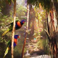 Aussie Rain Forest by vanndra
