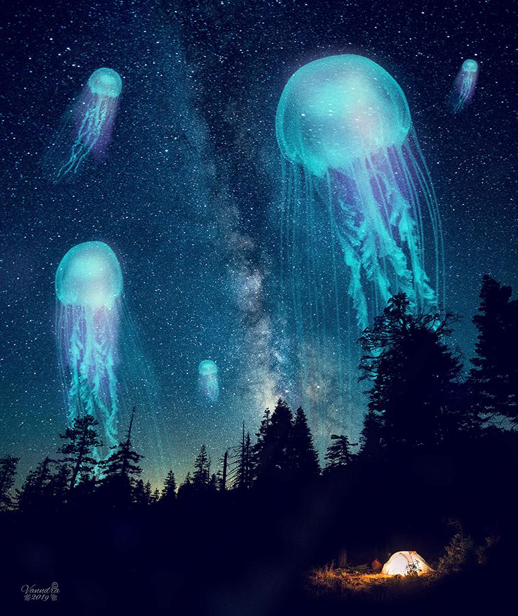 Space Jelly Fish by vanndra