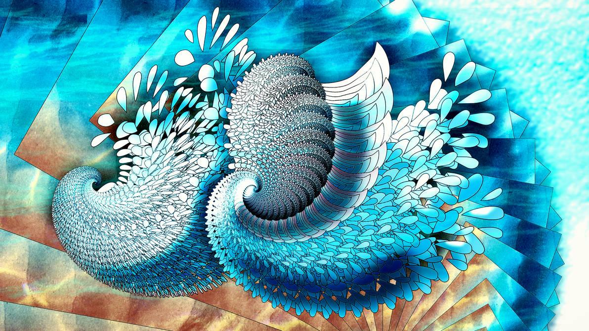 Shells by vanndra