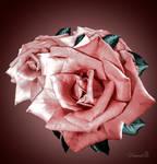 Meg's Rose by vanndra