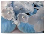 Blue Petals by LightSculpting