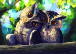 Owls! by Mothka
