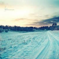 .: winter today :. by all17