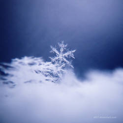 .: snowflakee 2 :. by all17