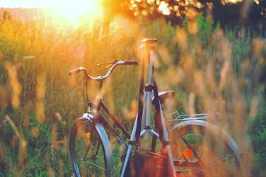 bicycle trip by all17