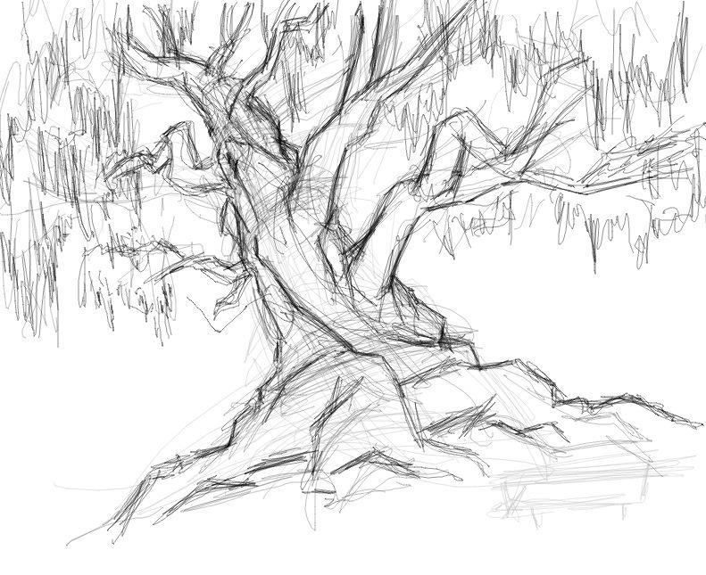 tree drawings speak melinda