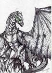 Drago- squamenere