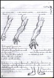 Guida ai licantropi p.8 by FuriarossaAndMimma