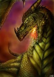 Dragon by FuriarossaAndMimma