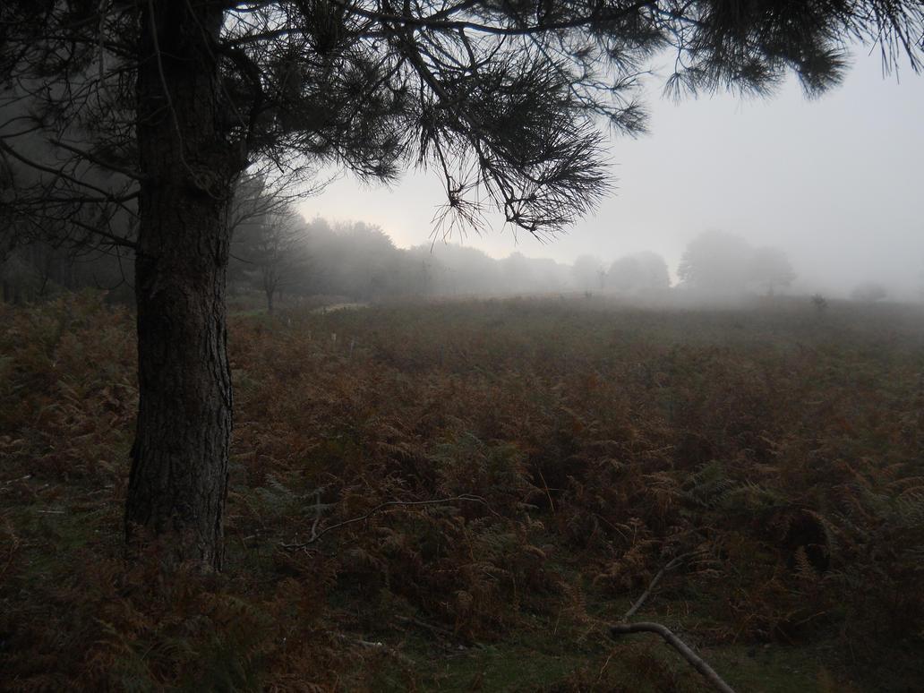 Mist 3 by FuriarossaAndMimma