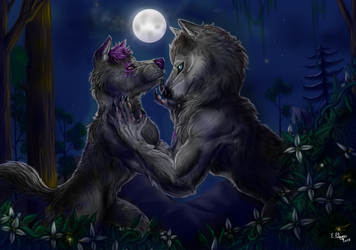 Commission - Couple of werewolves by FuriarossaAndMimma