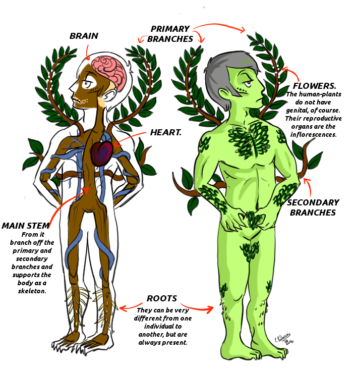 Hannibal AU - General plant anatomy by FuriarossaAndMimma on DeviantArt