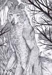 Mexican gray wolf werewolf by FuriarossaAndMimma