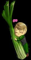 Hannibal vegetables - Celery