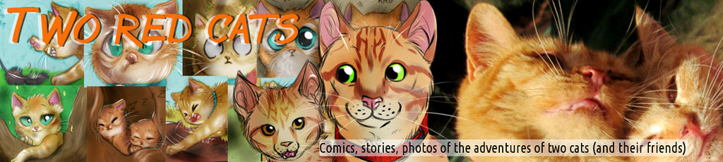 Two Red Cats - New header by FuriarossaAndMimma