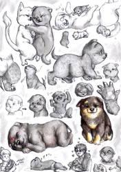 Exoterism - Werewolf puppies by FuriarossaAndMimma