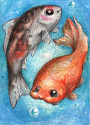 ACEO - Two goldfish